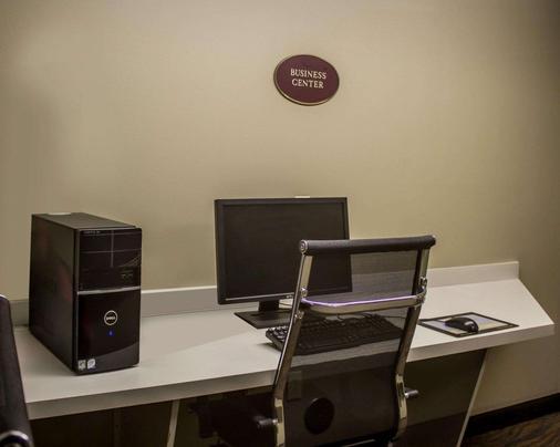 Sleep Inn - Sandusky - Business centre