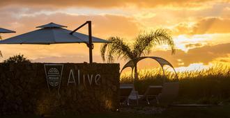 Alive Spa Resort - Punta del Este - Patio