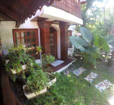 The Lotus Garden