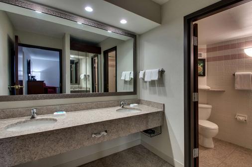 Drury Inn & Suites Evansville East - Evansville - Bathroom