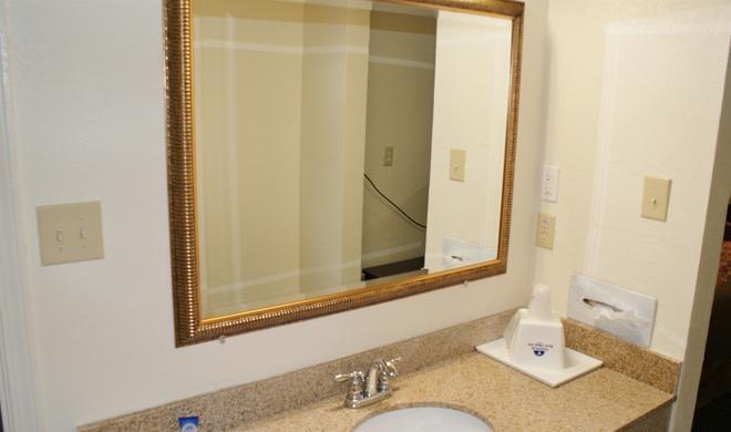 Americas Best Value Inn Ft. Jackson - Columbia - Bathroom
