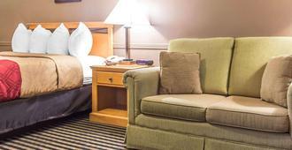 Econo Lodge Downtown Ottawa - אוטאווה - חדר שינה
