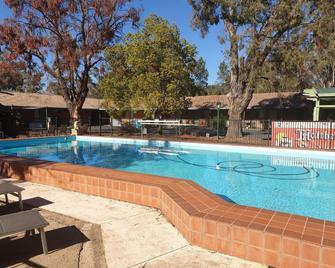 Matthew Flinders Motor Inn - Coonabarabran - Pool