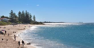 Norfolks on Moffat Beach - Caloundra - Παραλία