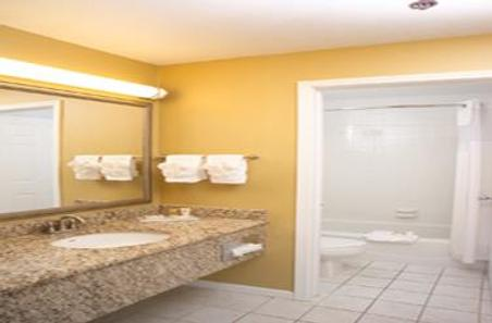 Ivy Court Inn & Suites - South Bend - Μπάνιο