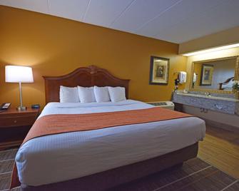 Best Western Resort Hotel & Conference Center - Portage - Ložnice