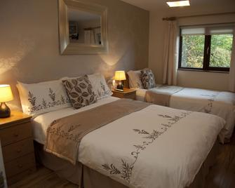Arch House Bed and Breakfast and Apartments - Athlone - Schlafzimmer