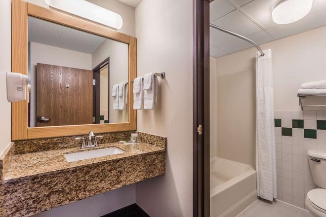威斯康星戴爾斯美國套房酒店 - 威斯康辛德爾斯 - 威斯康星戴爾 - 浴室
