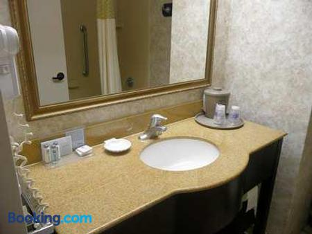 Hampton Inn Decatur - Decatur - Bathroom