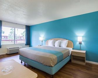 Motel 6 Spring Hill Weeki Wachee - Spring Hill - Schlafzimmer