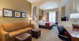 Comfort Inn & Suites Northeast - Gateway - St. Petersburg - Habitación