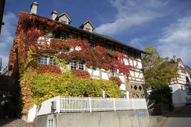 Les Mignardises - Laufen-Uhwiesen - Building