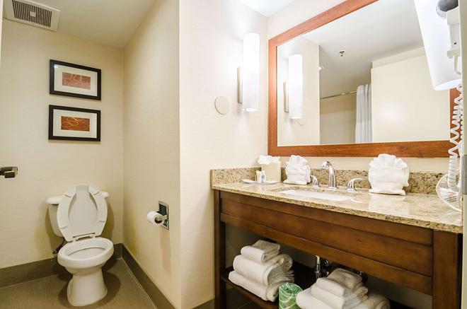 Comfort Suites Innsbrook - Glen Allen - Μπάνιο