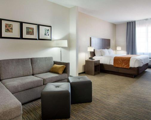 Comfort Suites San Angelo - San Angelo - Bedroom