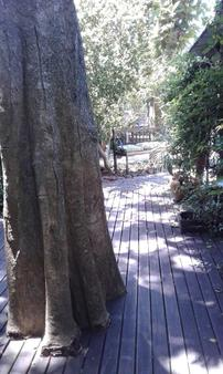 Recanto Gaia - Florianopolis - Outdoors view