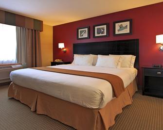 Holiday Inn Express Hotel & Suites Defiance, An IHG Hotel - Defiance - Schlafzimmer