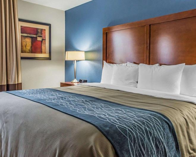 Comfort Inn - Belle Vernon - Bedroom