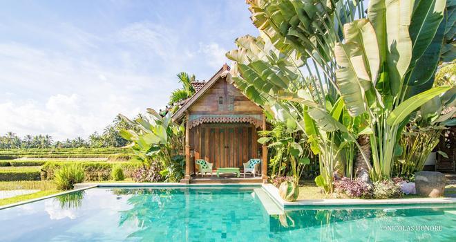 哈迪帕迪小屋酒店 - 烏布 - 游泳池