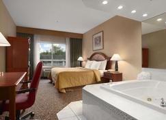 Days Inn & Suites by Wyndham Albany - Colonie - Soveværelse