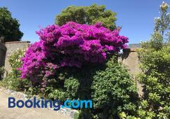 Casa Felina Apartment - Wellington - Outdoors view