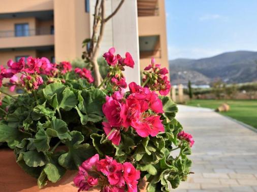 Golden Bay Hotel Apartments - Mália - Outdoors view