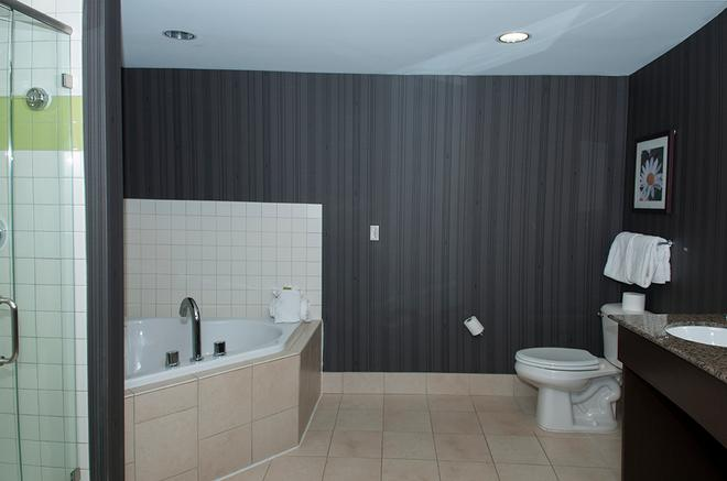 Soaring Eagle Waterpark And Hotel - Mount Pleasant - Bathroom