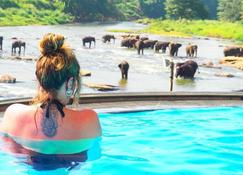 Hotel Elephant Bay - Pinnawala