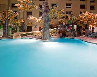 Holiday Inn Hotel & Suites Madison West - Madison - Pool