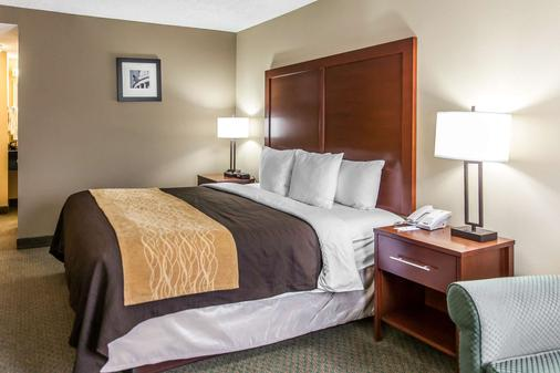 Comfort Inn Pentagon City - Arlington - Bedroom