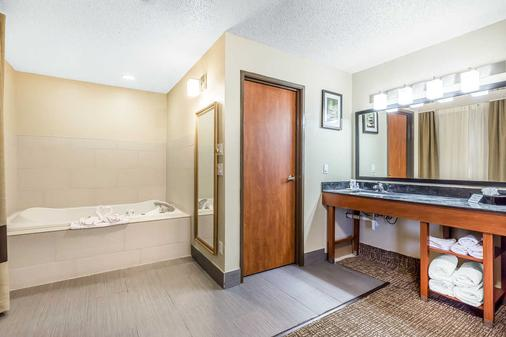 Comfort Suites North Dallas - Dallas - Bathroom