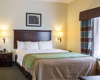 Quality Inn Donaldsonville - Gonzales - Donaldsonville - Bedroom