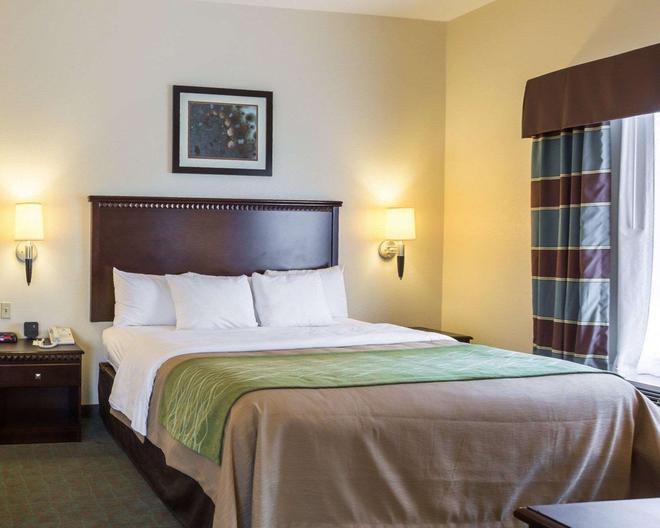 Quality Inn Donaldsonville - Donaldsonville - Schlafzimmer