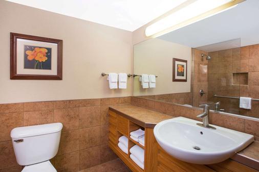 Ramada by Wyndham Des Moines Tropics Resort & Conference Ctr - Des Moines - Bathroom