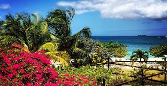 雷迪森格瑞那達海灘度假村 - 聖喬治 - 聖喬治 - 室外景