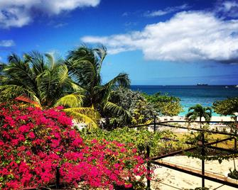 Radisson Grenada Beach Resort - St. George's - Venkovní prostory