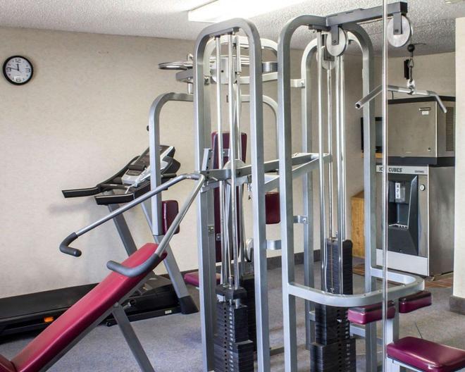 科勒尼中心商場伊克諾酒店 - 阿爾巴尼 - 奧爾巴尼 - 健身房