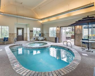 Comfort Inn and Suites - Carbondale - Pool