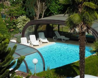 Hôtel du Lion d'Or - Entraygues-sur-Truyère - Pool