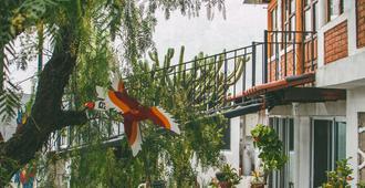 Las Enredaderas - Guanajuato - Patio