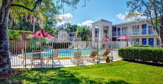 Motel 6 Tallahassee - Downtown - Tallahassee - Pool