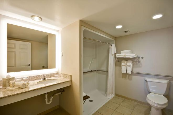 Homewood Suites Dulles-Int'l Airport - Herndon - Μπάνιο