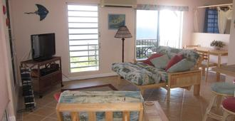 New Listing - Incredible Views - Overlooking Caribbean Sea - Saint Thomas Island - Stue