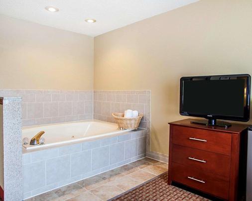 Quality Inn and Suites Davenport near I-80 - Davenport - Bathroom