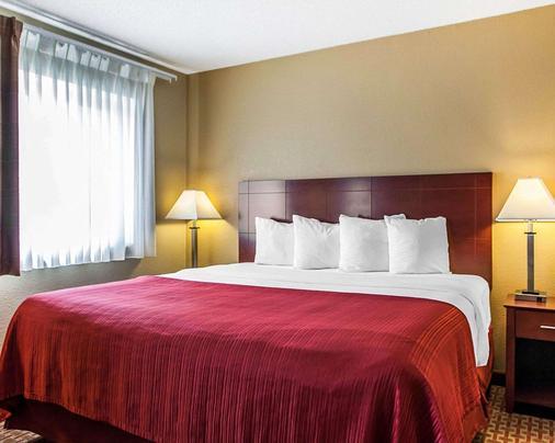 Quality Inn and Suites Davenport near I-80 - Davenport - Bedroom