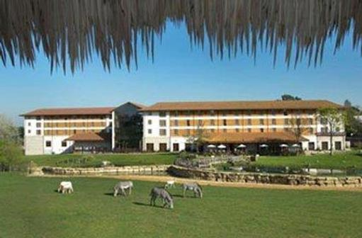 Chessington Safari Hotel - Chessington - Building