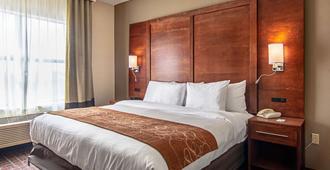 Comfort Suites Nw Dallas Near Love Field - דאלאס - חדר שינה