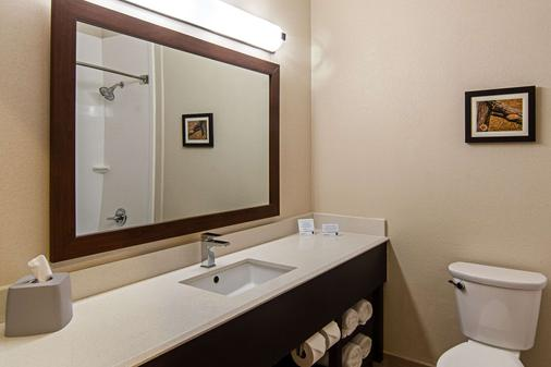 Comfort Suites Nw Dallas Near Love Field - Dallas - Phòng tắm