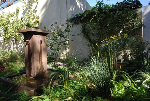Liz at Lancaster Guesthouse - Johannesburg