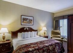 Quality Inn & Suites Skyways - New Castle - Habitación