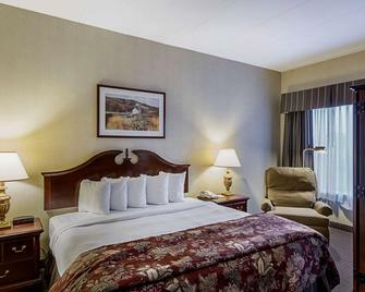Quality Inn & Suites Skyways - New Castle - Спальня